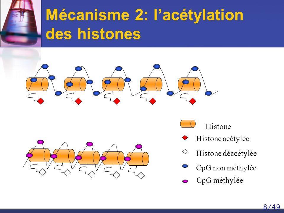 8/49 Mécanisme 2: lacétylation des histones Histone déacétylée Histone Histone acétylée CpG non méthylée CpG méthylée