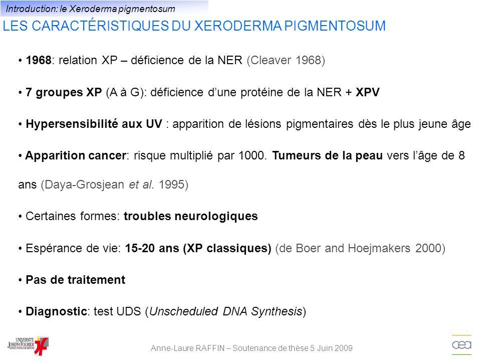 LES CARACTÉRISTIQUES DU XERODERMA PIGMENTOSUM Anne-Laure RAFFIN – Soutenance de thèse 5 Juin 2009 1968: relation XP – déficience de la NER (Cleaver 19