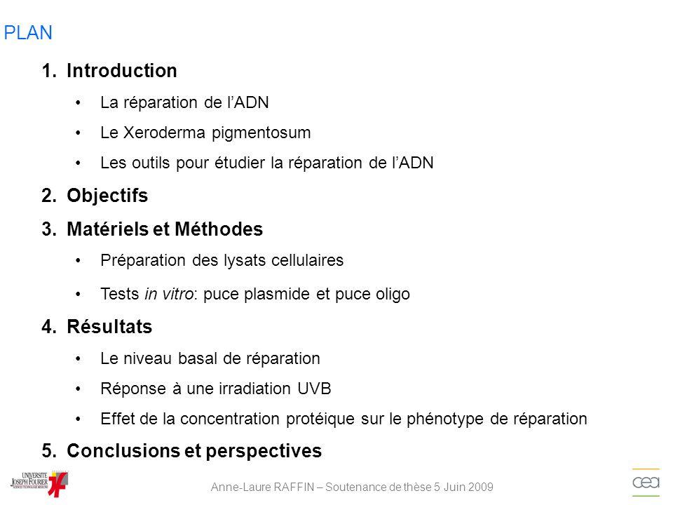 PARAMÈTRES MESURÉS Anne-Laure RAFFIN – Soutenance de thèse 5 Juin 2009 Phénotype de réparation Quantification de la fluorescence totale Matériels et Méthodes Part relative de lintensité de fluorescence des différentes lésions Soustraction du contrôle Somme des Intensité de fluo pour la même lésion Profil dER (Excision-Resynthèse)