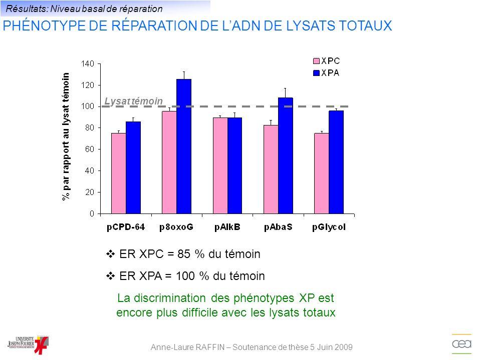 Anne-Laure RAFFIN – Soutenance de thèse 5 Juin 2009 Résultats: Niveau basal de réparation PHÉNOTYPE DE RÉPARATION DE LADN DE LYSATS TOTAUX La discrimi