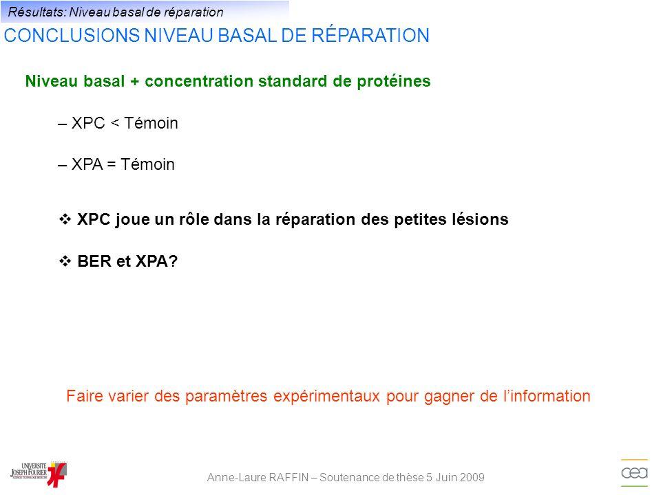 Anne-Laure RAFFIN – Soutenance de thèse 5 Juin 2009 Résultats: Niveau basal de réparation CONCLUSIONS NIVEAU BASAL DE RÉPARATION Niveau basal + concen