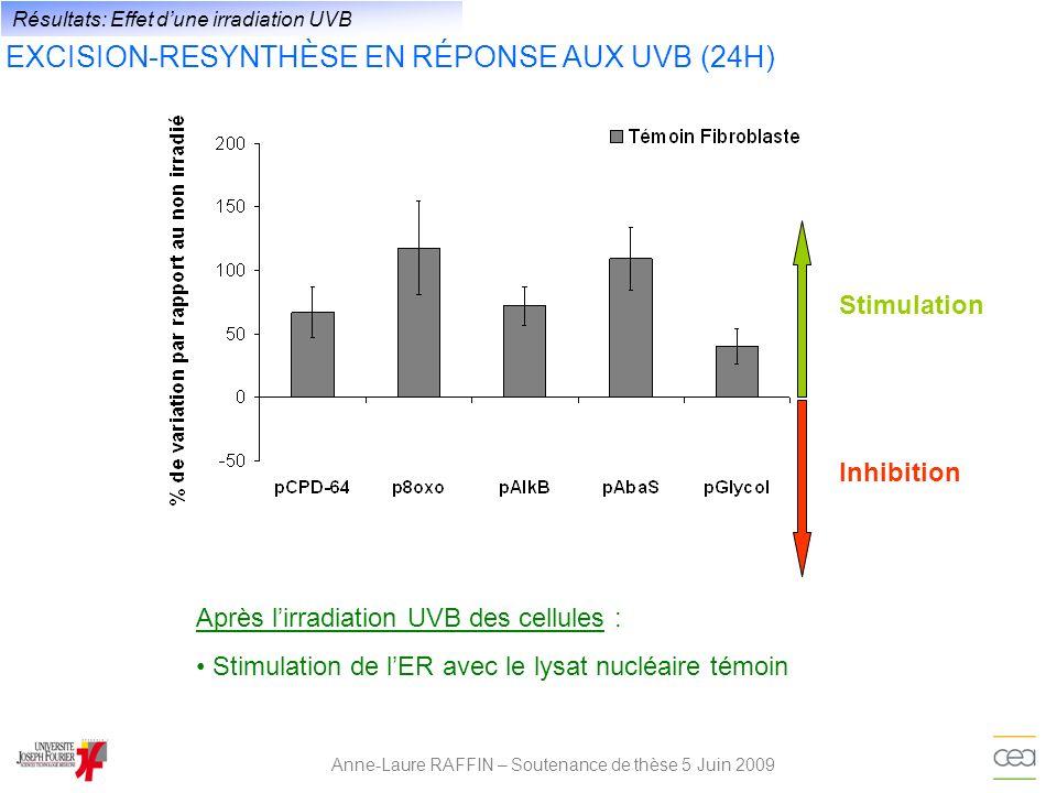 Anne-Laure RAFFIN – Soutenance de thèse 5 Juin 2009 Résultats: Effet dune irradiation UVB EXCISION-RESYNTHÈSE EN RÉPONSE AUX UVB (24H) Stimulation de