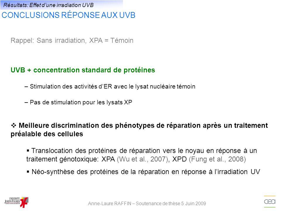 Anne-Laure RAFFIN – Soutenance de thèse 5 Juin 2009 Résultats: Effet dune irradiation UVB CONCLUSIONS RÉPONSE AUX UVB UVB + concentration standard de