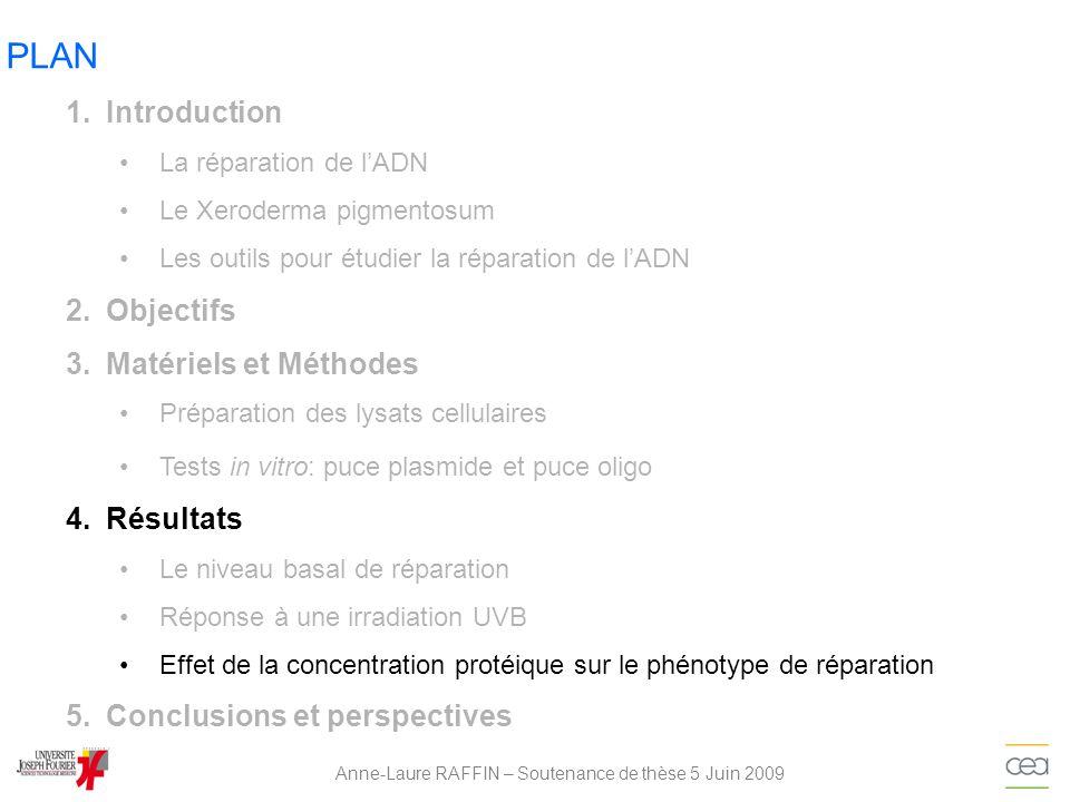 PLAN Anne-Laure RAFFIN – Soutenance de thèse 5 Juin 2009 1.Introduction La réparation de lADN Le Xeroderma pigmentosum Les outils pour étudier la répa