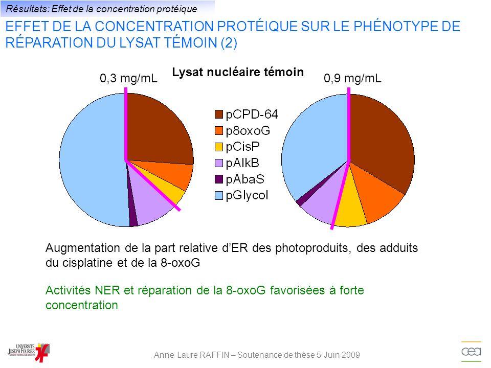 Anne-Laure RAFFIN – Soutenance de thèse 5 Juin 2009 Résultats: Effet de la concentration protéique Augmentation de la part relative dER des photoprodu