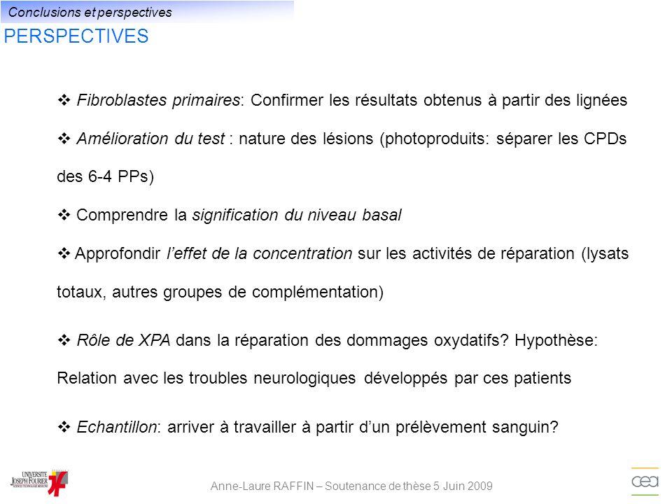 PERSPECTIVES Anne-Laure RAFFIN – Soutenance de thèse 5 Juin 2009 Fibroblastes primaires: Confirmer les résultats obtenus à partir des lignées Améliora