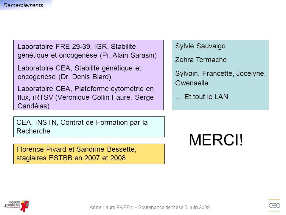 Anne-Laure RAFFIN – Soutenance de thèse 5 Juin 2009 Remerciements Laboratoire FRE 29-39, IGR, Stabilité génétique et oncogenèse (Pr. Alain Sarasin) La