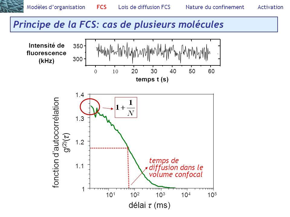 Modèles dorganisation FCS Lois de diffusion FCS Nature du confinement Activation Principe de la FCS: cas de plusieurs molécules 010 2030405060 300 350 Intensité de fluorescence (kHz) temps t (s) 10 5 délai τ (ms) 1 1.1 1.2 1.3 1.4 10 1 10 2 10 3 10 4 fonction dautocorrélation g (2) ( τ ) temps de diffusion dans le volume confocal