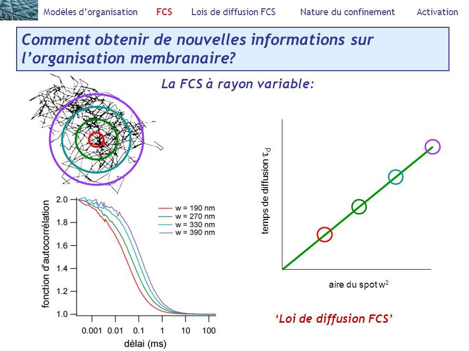 Comment obtenir de nouvelles informations sur lorganisation membranaire.