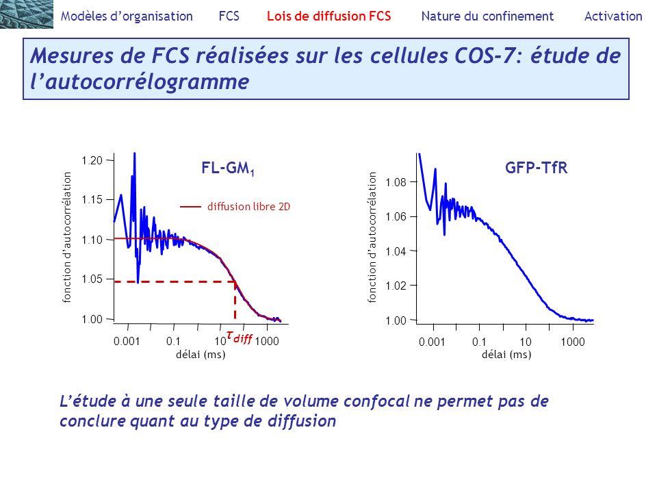 1.08 1.06 1.04 1.02 1.00 fonction dautocorrélation 0.001 0.1 10 1000 délai (ms) 1.20 1.15 1.10 1.05 1.00 fonction dautocorrélation 0.001 0.1 10 1000 délai (ms) Modèles dorganisation FCS Lois de diffusion FCS Nature du confinement Activation Mesures de FCS réalisées sur les cellules COS-7: étude de lautocorrélogramme GFP-TfRFL-GM 1 diffusion libre 2D τ diff Létude à une seule taille de volume confocal ne permet pas de conclure quant au type de diffusion