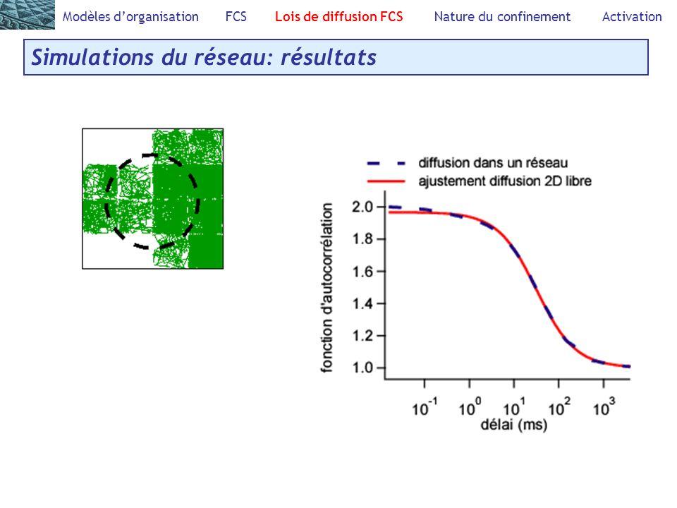 Modèles dorganisation FCS Lois de diffusion FCS Nature du confinement Activation Simulations du réseau: résultats