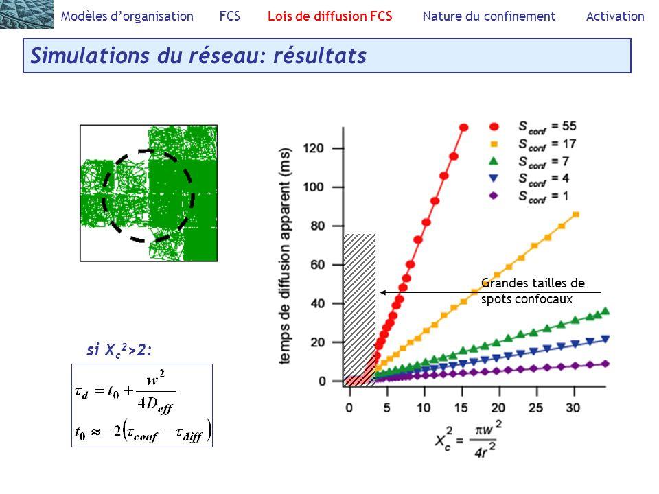 Modèles dorganisation FCS Lois de diffusion FCS Nature du confinement Activation Simulations du réseau: résultats si X c 2 >2: Grandes tailles de spot