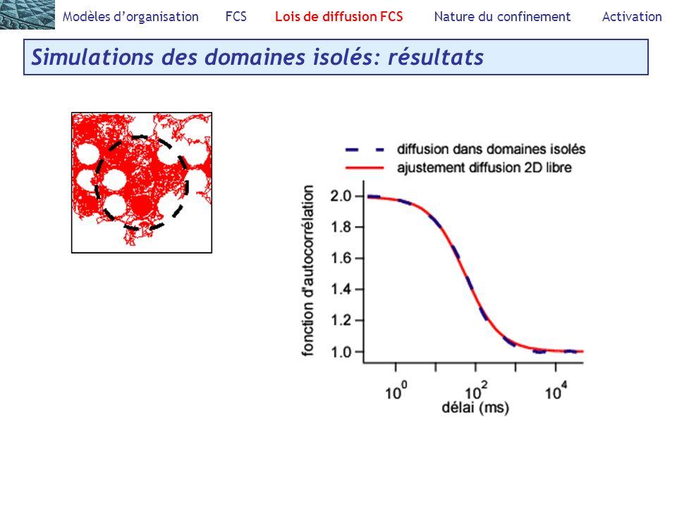 Modèles dorganisation FCS Lois de diffusion FCS Nature du confinement Activation Simulations des domaines isolés: résultats
