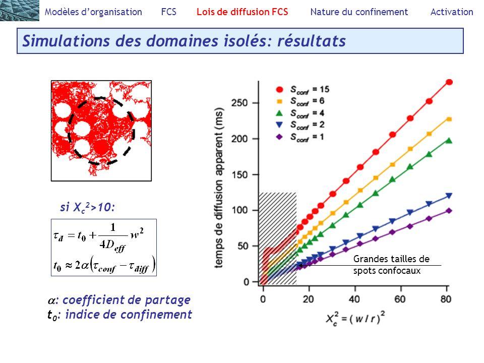 Modèles dorganisation FCS Lois de diffusion FCS Nature du confinement Activation Simulations des domaines isolés: résultats : coefficient de partage t 0 : indice de confinement Grandes tailles de spots confocaux si X c 2 >10: