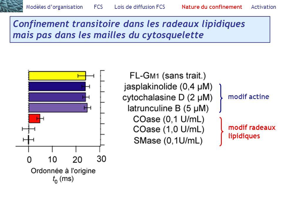 Modèles dorganisation FCS Lois de diffusion FCS Nature du confinement Activation Confinement transitoire dans les radeaux lipidiques mais pas dans les mailles du cytosquelette modif actine modif radeaux lipidiques