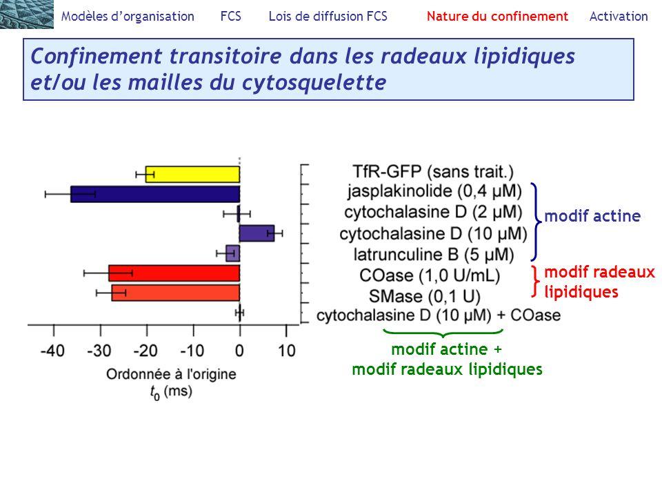 Modèles dorganisation FCS Lois de diffusion FCS Nature du confinement Activation Confinement transitoire dans les radeaux lipidiques et/ou les mailles du cytosquelette modif actine modif radeaux lipidiques modif actine + modif radeaux lipidiques