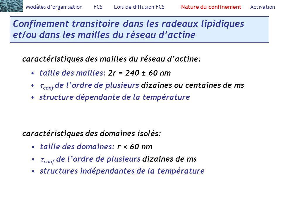 Modèles dorganisation FCS Lois de diffusion FCS Nature du confinement Activation Confinement transitoire dans les radeaux lipidiques et/ou dans les mailles du réseau dactine caractéristiques des mailles du réseau dactine: caractéristiques des domaines isolés: taille des mailles: 2r = 240 ± 60 nm conf de lordre de plusieurs dizaines ou centaines de ms structure dépendante de la température taille des domaines: r < 60 nm conf de lordre de plusieurs dizaines de ms structures indépendantes de la température