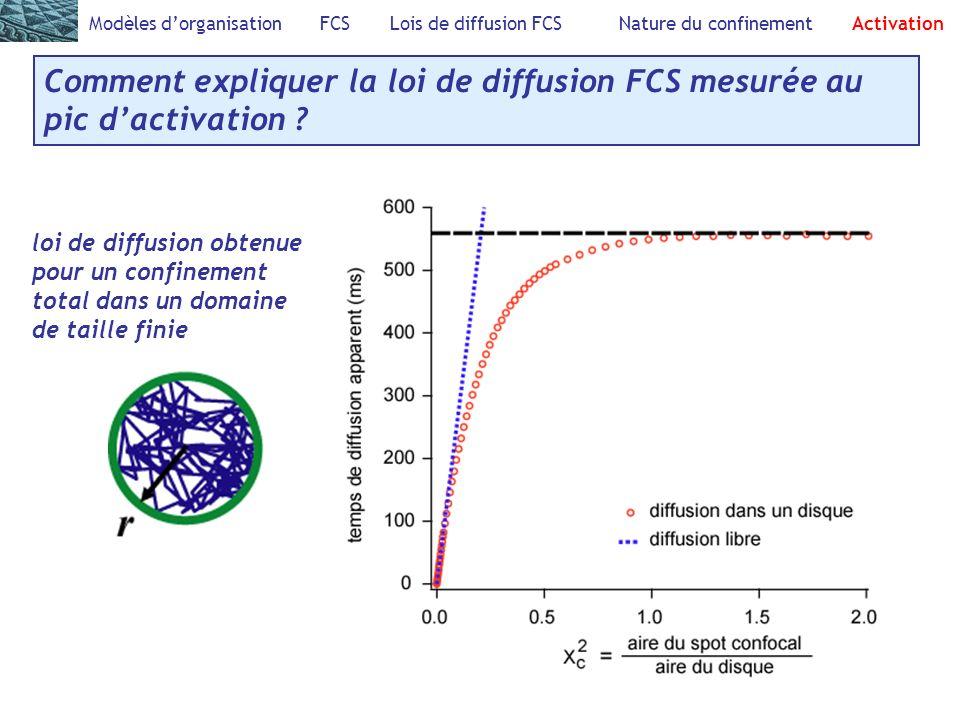 Modèles dorganisation FCS Lois de diffusion FCS Nature du confinement Activation Comment expliquer la loi de diffusion FCS mesurée au pic dactivation