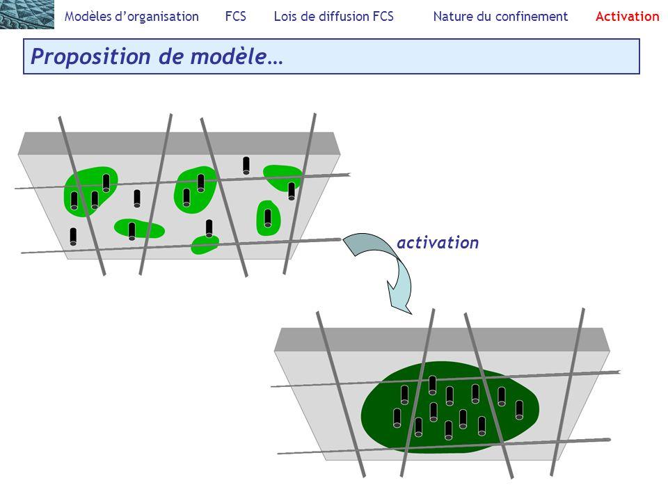 Modèles dorganisation FCS Lois de diffusion FCS Nature du confinement Activation Proposition de modèle… activation