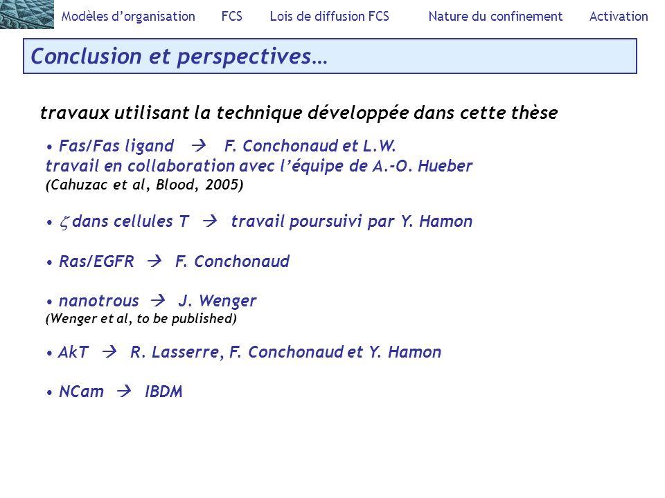Modèles dorganisation FCS Lois de diffusion FCS Nature du confinement Activation Conclusion et perspectives… travaux utilisant la technique développée dans cette thèse Fas/Fas ligand F.