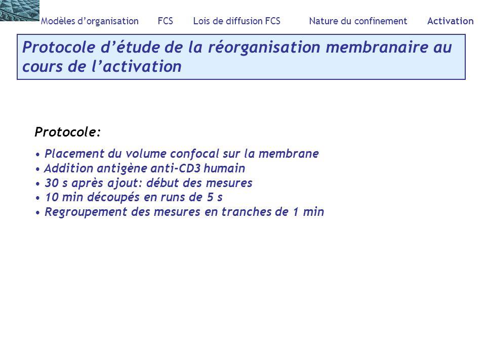 Modèles dorganisation FCS Lois de diffusion FCS Nature du confinement Activation Protocole détude de la réorganisation membranaire au cours de lactiva