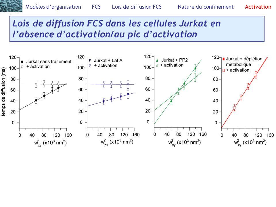 Modèles dorganisation FCS Lois de diffusion FCS Nature du confinement Activation Lois de diffusion FCS dans les cellules Jurkat en labsence dactivation/au pic dactivation