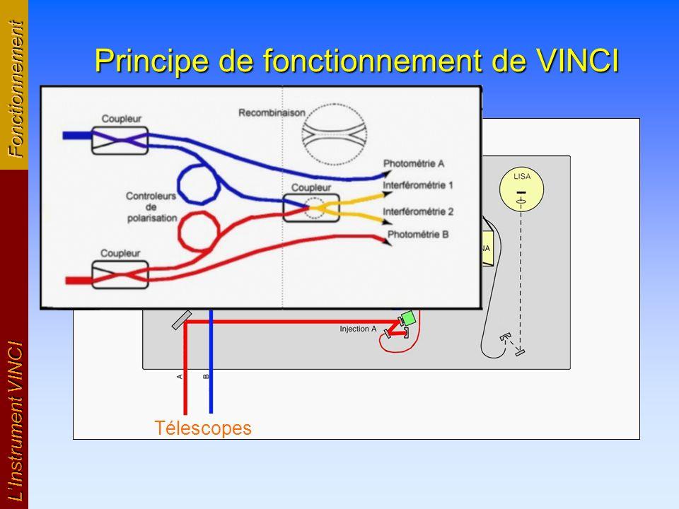 LInstrument VINCI Images