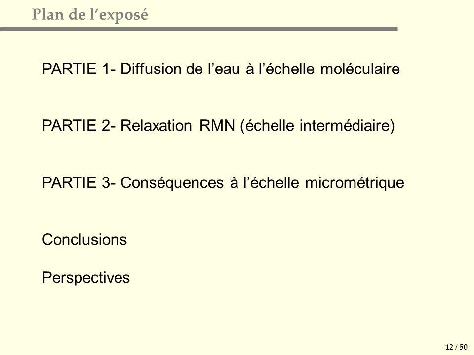 12 / 50 Plan de lexposé PARTIE 1- Diffusion de leau à léchelle moléculaire PARTIE 2- Relaxation RMN (échelle intermédiaire) PARTIE 3- Conséquences à léchelle micrométrique Conclusions Perspectives