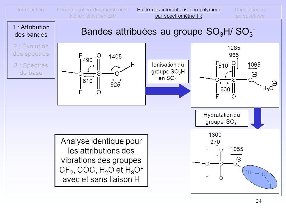 24 IntroductionCaractérisation des membranes Nafion et Nafion-ZrP Étude des interactions eau-polymère par spectrométrie IR Conclusion et perspectives