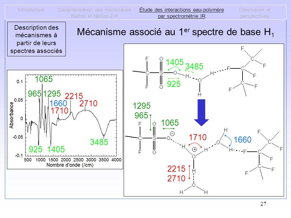 27 Mécanisme associé au 1 er spectre de base H 1 IntroductionCaractérisation des membranes Nafion et Nafion-ZrP Étude des interactions eau-polymère pa