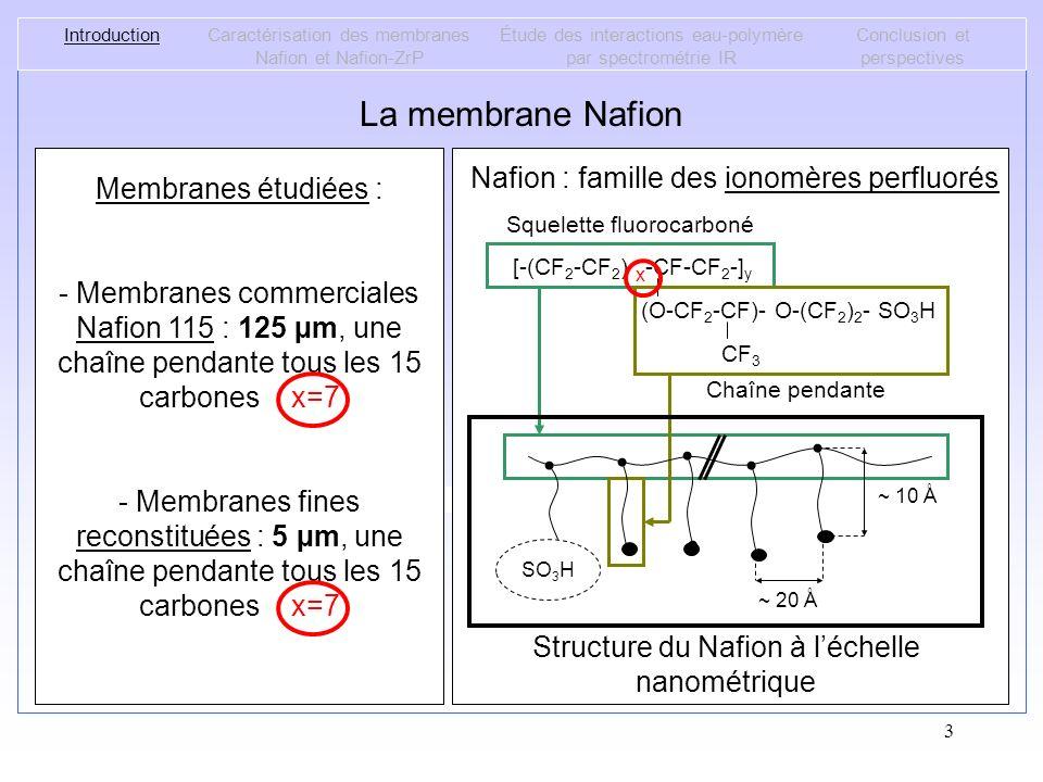 3 La membrane Nafion Structure du Nafion à léchelle micrométrique [Rubatat-2003] [-(CF 2 -CF 2 ) x -CF-CF 2 -] y (O-CF 2 -CF)- O-(CF 2 ) 2 - SO 3 H CF