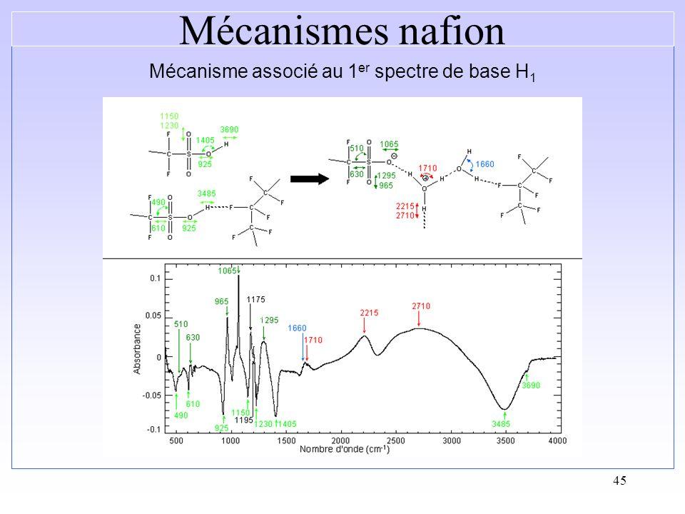 45 Mécanisme associé au 1 er spectre de base H 1 Mécanismes nafion