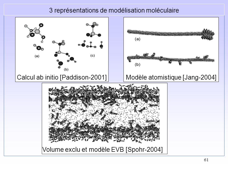 61 Calcul ab initio [Paddison-2001]Modèle atomistique [Jang-2004] Volume exclu et modèle EVB [Spohr-2004] 3 représentations de modélisation moléculair