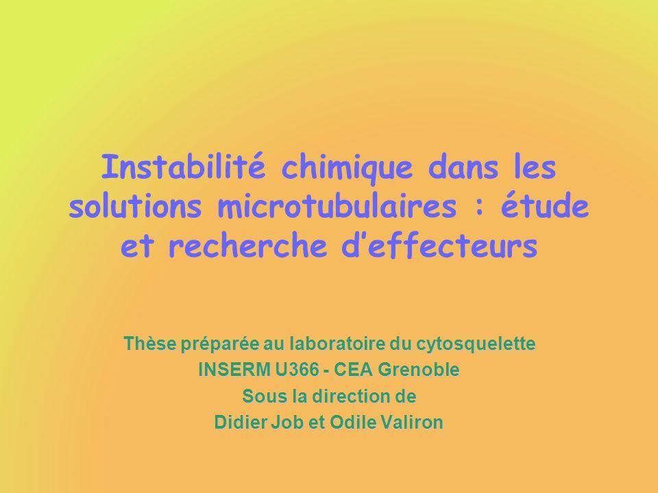 Instabilité chimique dans les solutions microtubulaires : étude et recherche deffecteurs Thèse préparée au laboratoire du cytosquelette INSERM U366 -