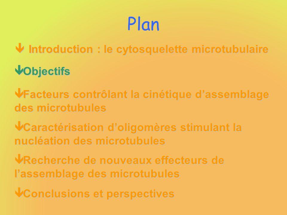 Plan ê Introduction : le cytosquelette microtubulaire ê Objectifs ê Facteurs contrôlant la cinétique dassemblage des microtubules ê Caractérisation do
