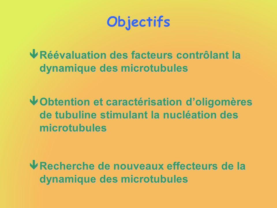 Objectifs êRéévaluation des facteurs contrôlant la dynamique des microtubules êObtention et caractérisation doligomères de tubuline stimulant la nuclé