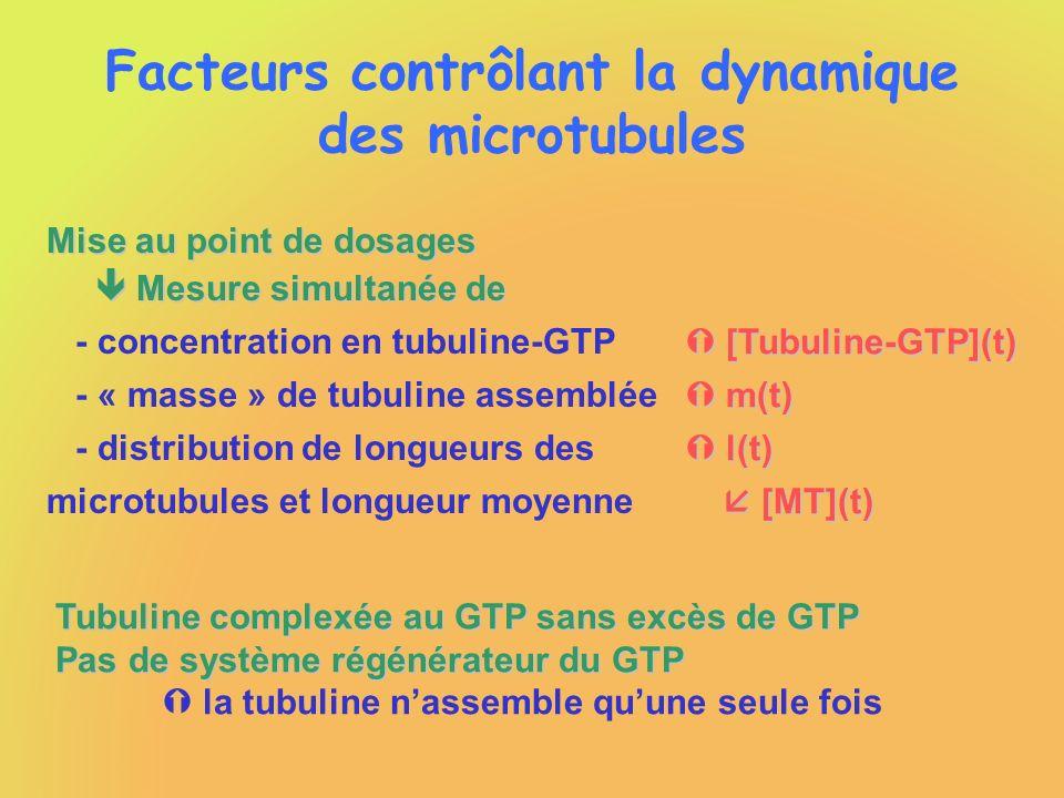 Facteurs contrôlant la dynamique des microtubules Mise au point de dosages Mesure simultanée de Mesure simultanée de - concentration en tubuline-GTP -