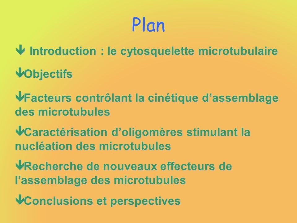 Plan ê Introduction : le cytosquelette microtubulaire ê Objectifs ê Facteurs contrôlant la cinétique dassemblage des microtubules ê Caractérisation doligomères stimulant la nucléation des microtubules ê Recherche de nouveaux effecteurs de lassemblage des microtubules ê Conclusions et perspectives