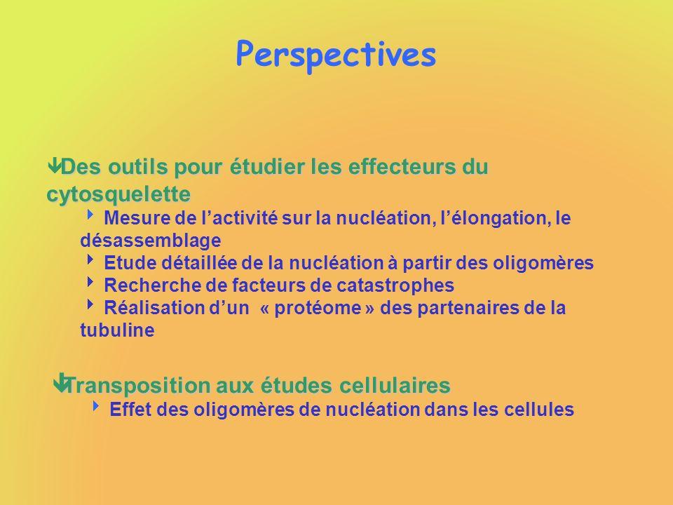 Perspectives Des outils pour étudier les effecteurs du cytosquelette ê Des outils pour étudier les effecteurs du cytosquelette Mesure de lactivité sur