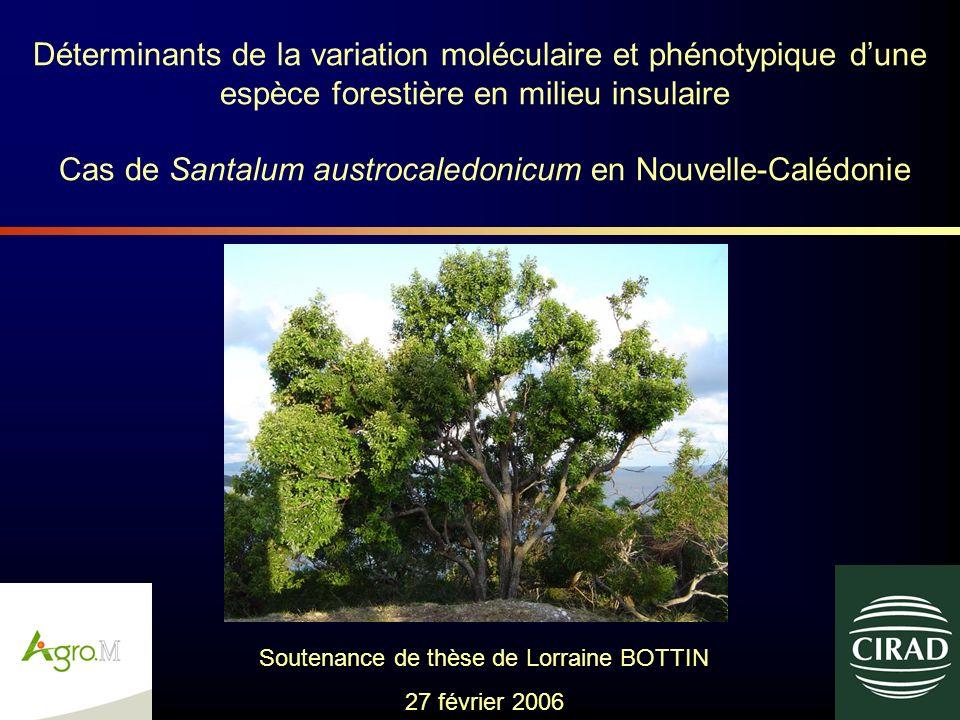 Déterminants de la variation moléculaire et phénotypique dune espèce forestière en milieu insulaire Cas de Santalum austrocaledonicum en Nouvelle-Calé