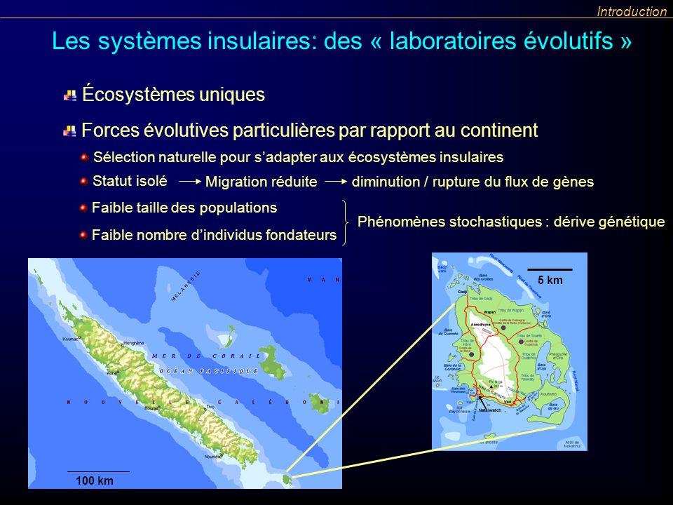 Faible taille des populations Phénomènes stochastiques : dérive génétique Introduction Faible nombre dindividus fondateurs Les systèmes insulaires: de