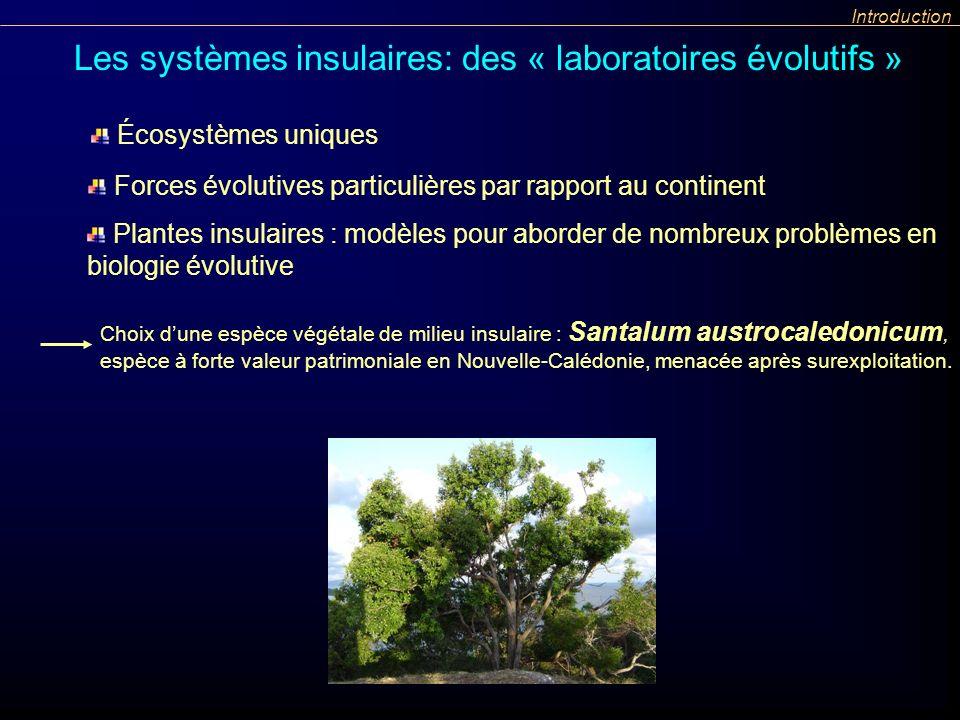 Introduction Choix dune espèce végétale de milieu insulaire : Santalum austrocaledonicum, espèce à forte valeur patrimoniale en Nouvelle-Calédonie, me