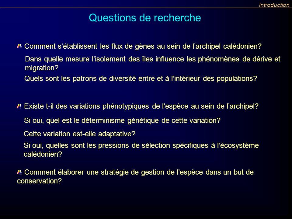 Questions de recherche Introduction Comment sétablissent les flux de gènes au sein de larchipel calédonien? Existe t-il des variations phénotypiques d