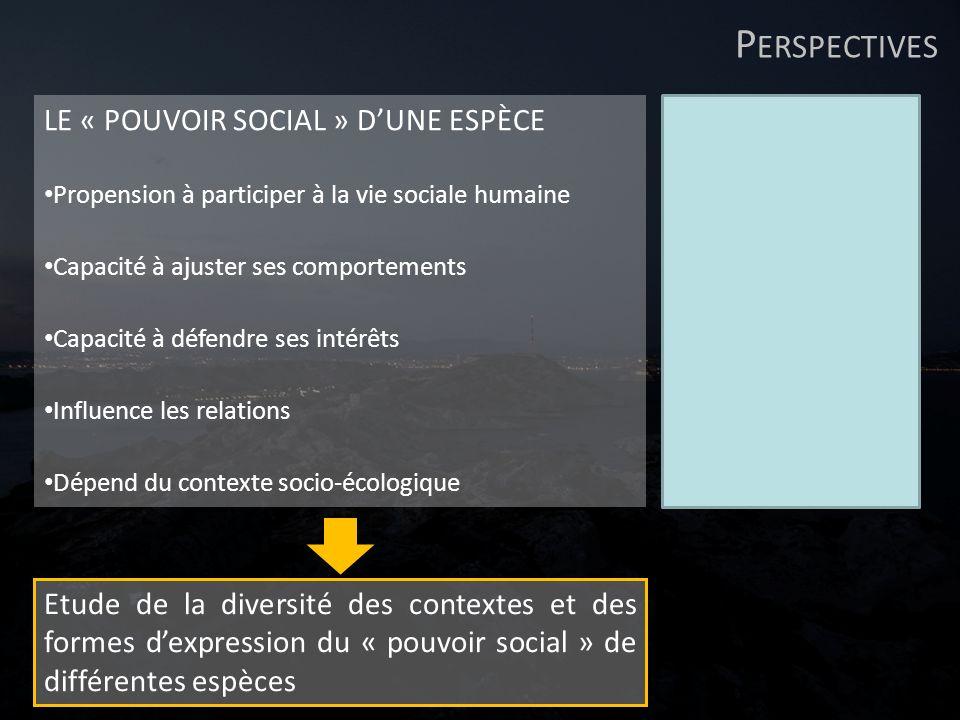 P ERSPECTIVES LE « POUVOIR SOCIAL » DUNE ESPÈCE Propension à participer à la vie sociale humaine Capacité à ajuster ses comportements Capacité à défen