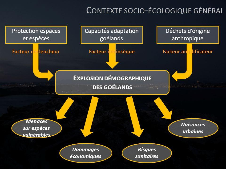 C ONTEXTE SOCIO - ÉCOLOGIQUE GÉNÉRAL Protection espaces et espèces Facteur déclencheur Déchets dorigine anthropique Facteur amplificateur Capacités ad