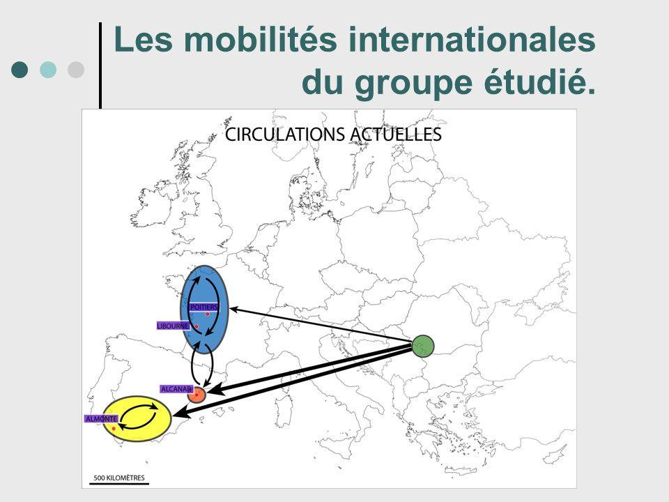 Les mobilités internationales du groupe étudié.