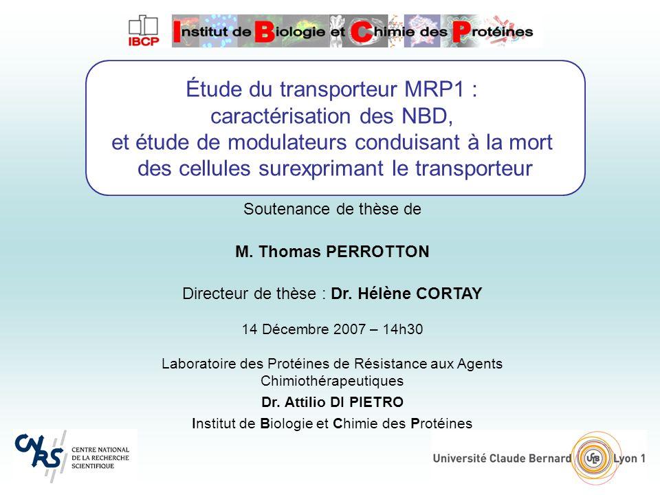Étude du transporteur MRP1 : caractérisation des NBD, et étude de modulateurs conduisant à la mort des cellules surexprimant le transporteur Soutenance de thèse de M.