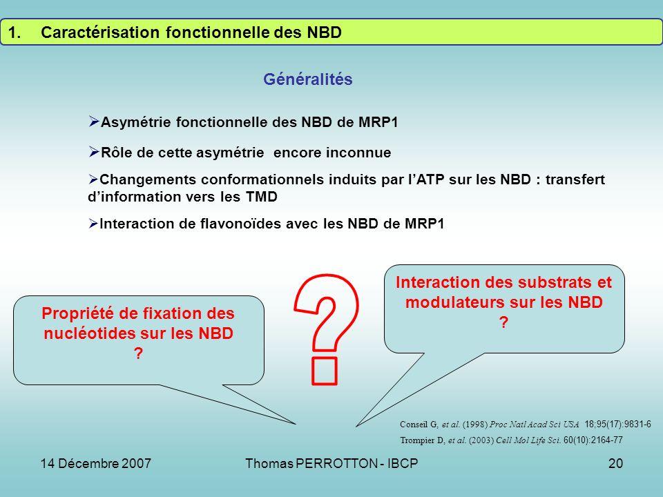 14 Décembre 2007Thomas PERROTTON - IBCP20 1.Caractérisation fonctionnelle des NBD Asymétrie fonctionnelle des NBD de MRP1 Rôle de cette asymétrie encore inconnue Changements conformationnels induits par lATP sur les NBD : transfert dinformation vers les TMD Interaction de flavonoïdes avec les NBD de MRP1 Généralités Trompier D, et al.