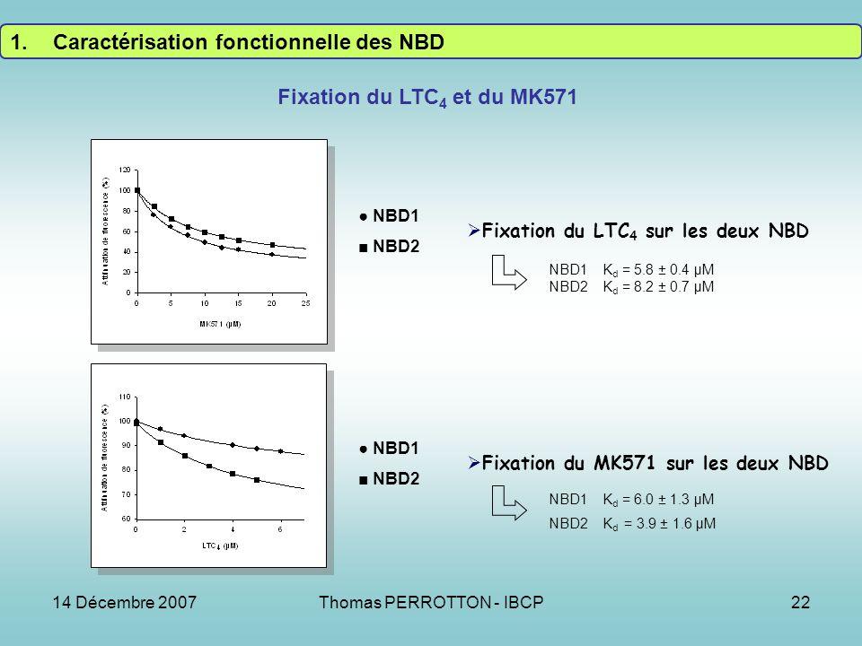 14 Décembre 2007Thomas PERROTTON - IBCP22 Fixation du LTC 4 et du MK571 NBD1 NBD2 NBD1 NBD2 Fixation du LTC 4 sur les deux NBD Fixation du MK571 sur les deux NBD NBD1 K d = 5.8 ± 0.4 µM NBD2 K d = 8.2 ± 0.7 µM NBD1 K d = 6.0 ± 1.3 µM NBD2 K d = 3.9 ± 1.6 µM 1.Caractérisation fonctionnelle des NBD