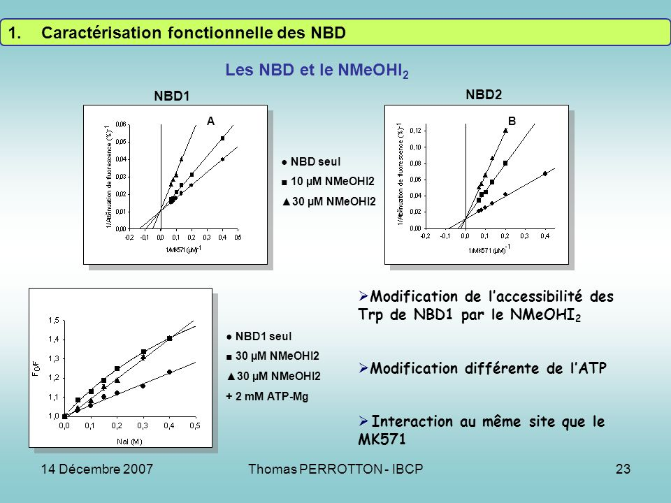 14 Décembre 2007Thomas PERROTTON - IBCP23 AB Les NBD et le NMeOHI 2 NBD1 seul 30 µM NMeOHI2 + 2 mM ATP-Mg NBD1 NBD2 NBD seul 10 µM NMeOHI2 30 µM NMeOHI2 Modification de laccessibilité des Trp de NBD1 par le NMeOHI 2 Modification différente de lATP Interaction au même site que le MK571 1.Caractérisation fonctionnelle des NBD